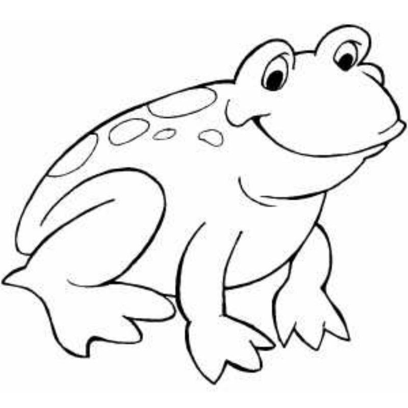coloring pages frog - photo#21
