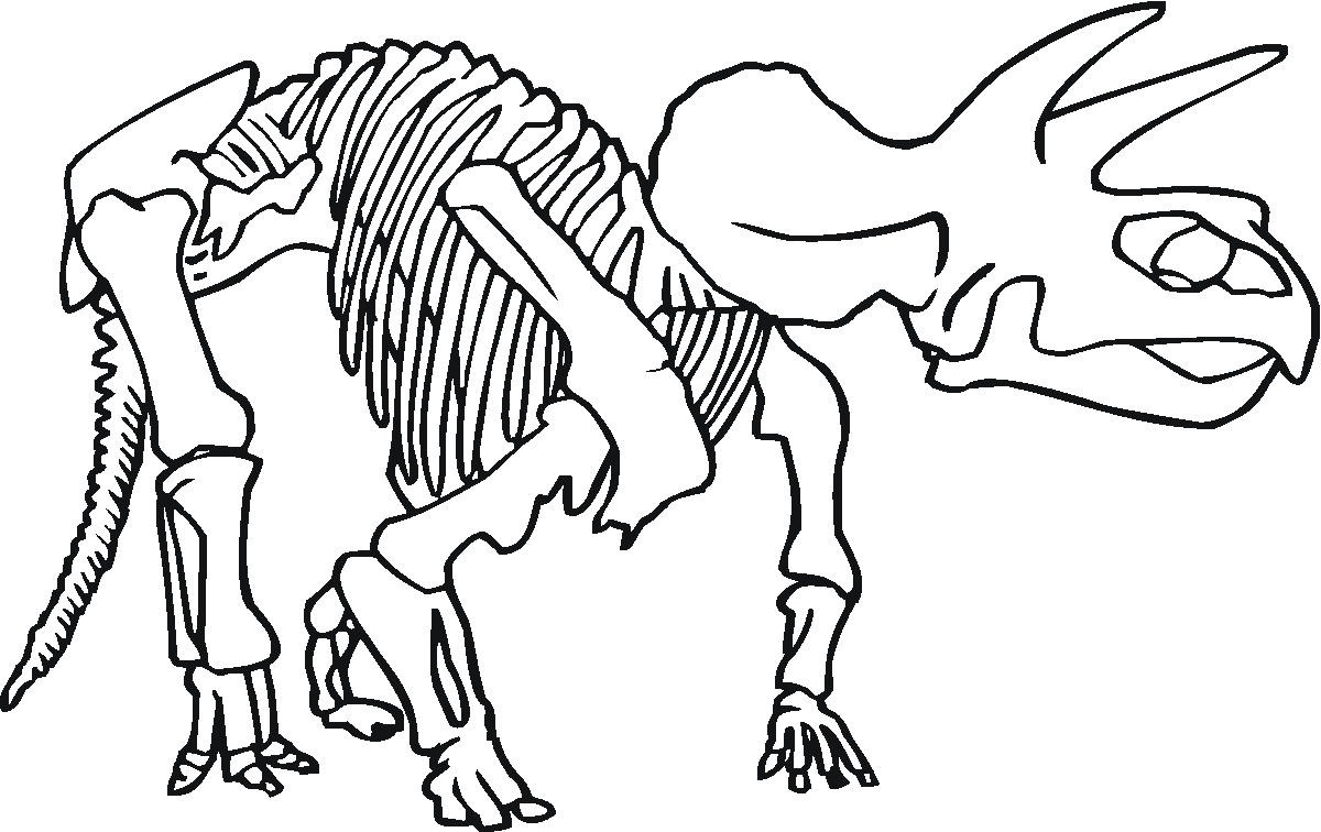Clip Art Dinosaur Skeleton Coloring Pages fossil coloring pages free page pages