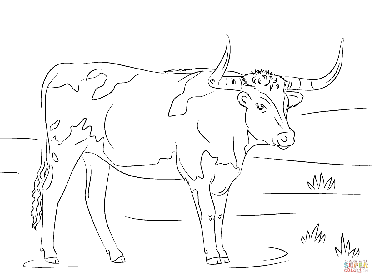 Texas longhorn coloring sheet coloring pages for Longhorn coloring page