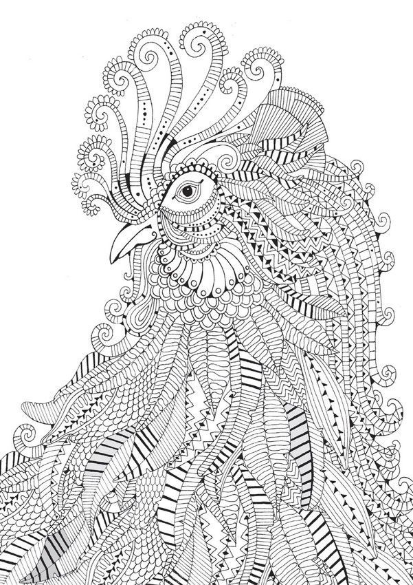 Best Adult Coloring Books €� A Beautiful And Very Detailed Peacock -  Coloring Home