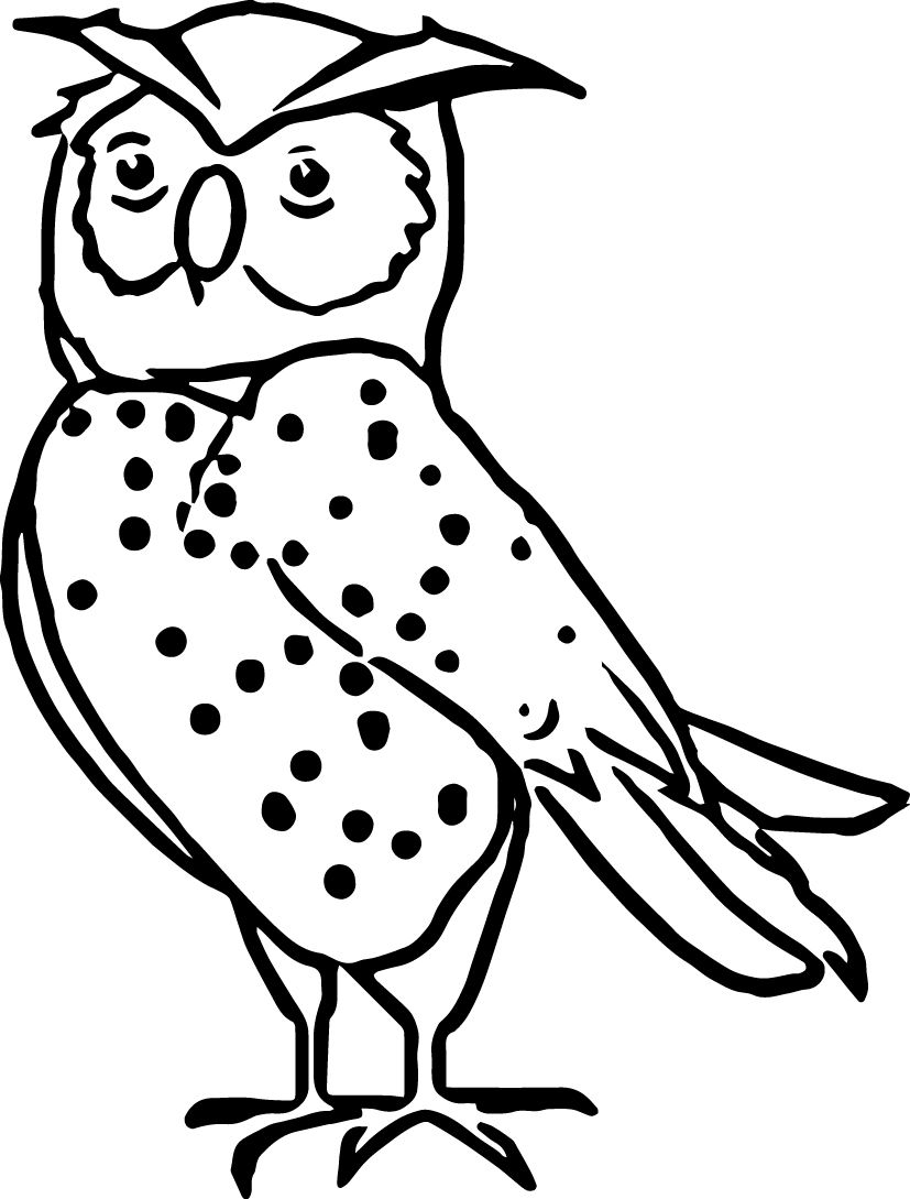 nocturnal animals coloring pages - photo#8