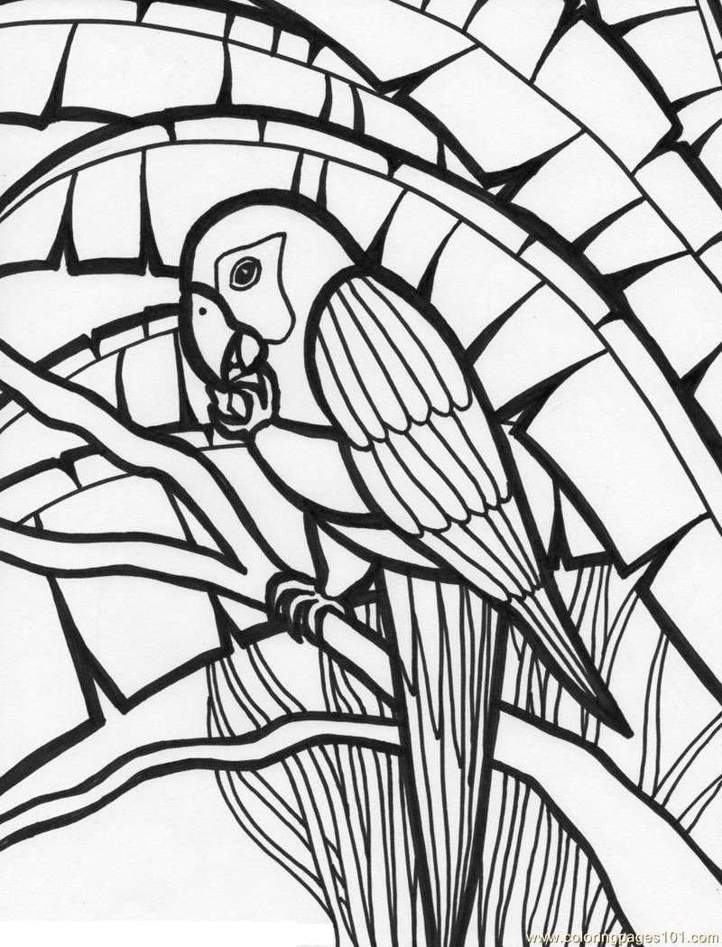 9 Pics Of Jungle Birds Coloring Pages