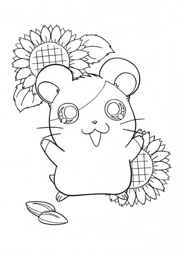Ginnie Pig Coloring Pages Coloring
