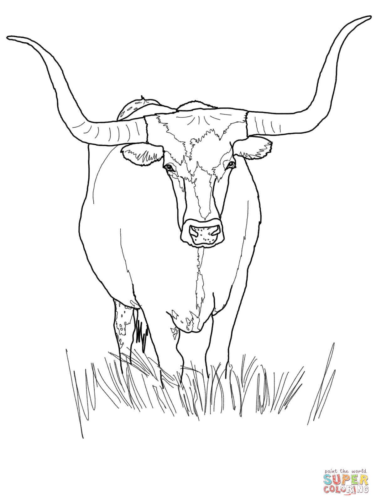 Texas longhorn coloring pages coloring home for Coloring pages for texas