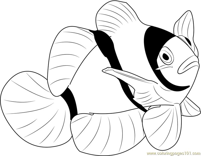 Fishes Coloring Pages - 310 Fishes printable pages and coloring sheets
