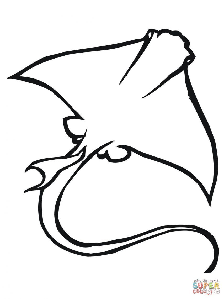 stingray coloring page healthengineco - Stingray Coloring Pages Printable