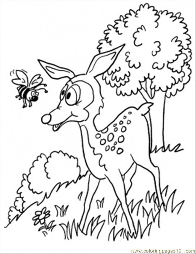 Coloring Pages I In The Forest Coloring Page (Cartoons > Bambi