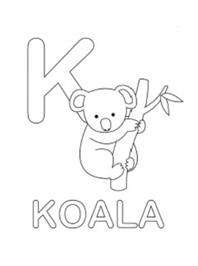 Koala Bear Pictures To Color Coloring Home