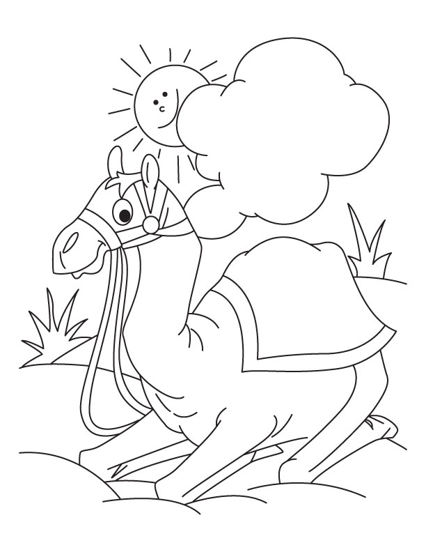 Desert Animals Coloring Pages AZ Coloring Pages