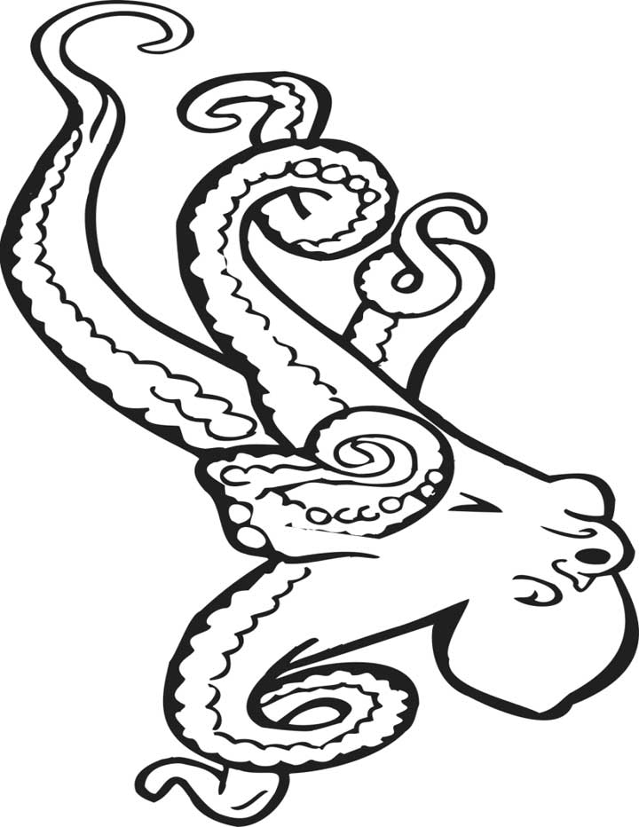 Printable Octopus Coloring Pages | animalgals