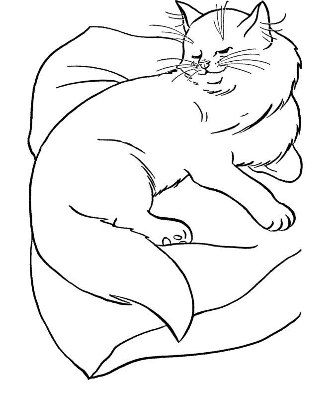 Big Cat Coloring Pages Coloring Home Big Cats Coloring Pages