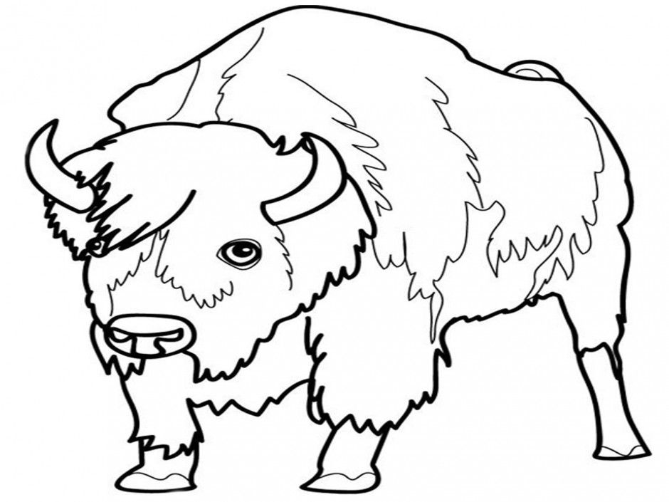 liger coloring pages - photo #9