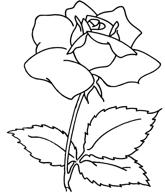 Flower Coloring Pages For Adults Az Coloring Pages Free Flower Coloring Pages For Adults