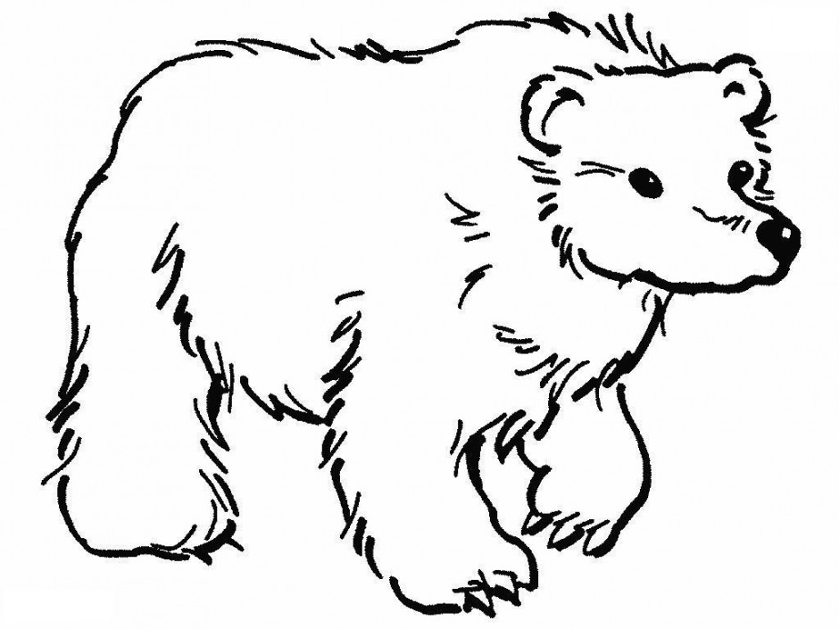 Smokey The Bear Coloring Pages