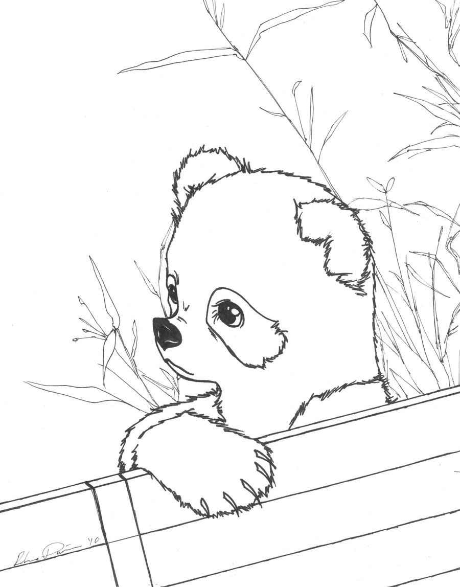 Cute Baby Panda Coloring Pages Only Coloring Pages Coloring Home