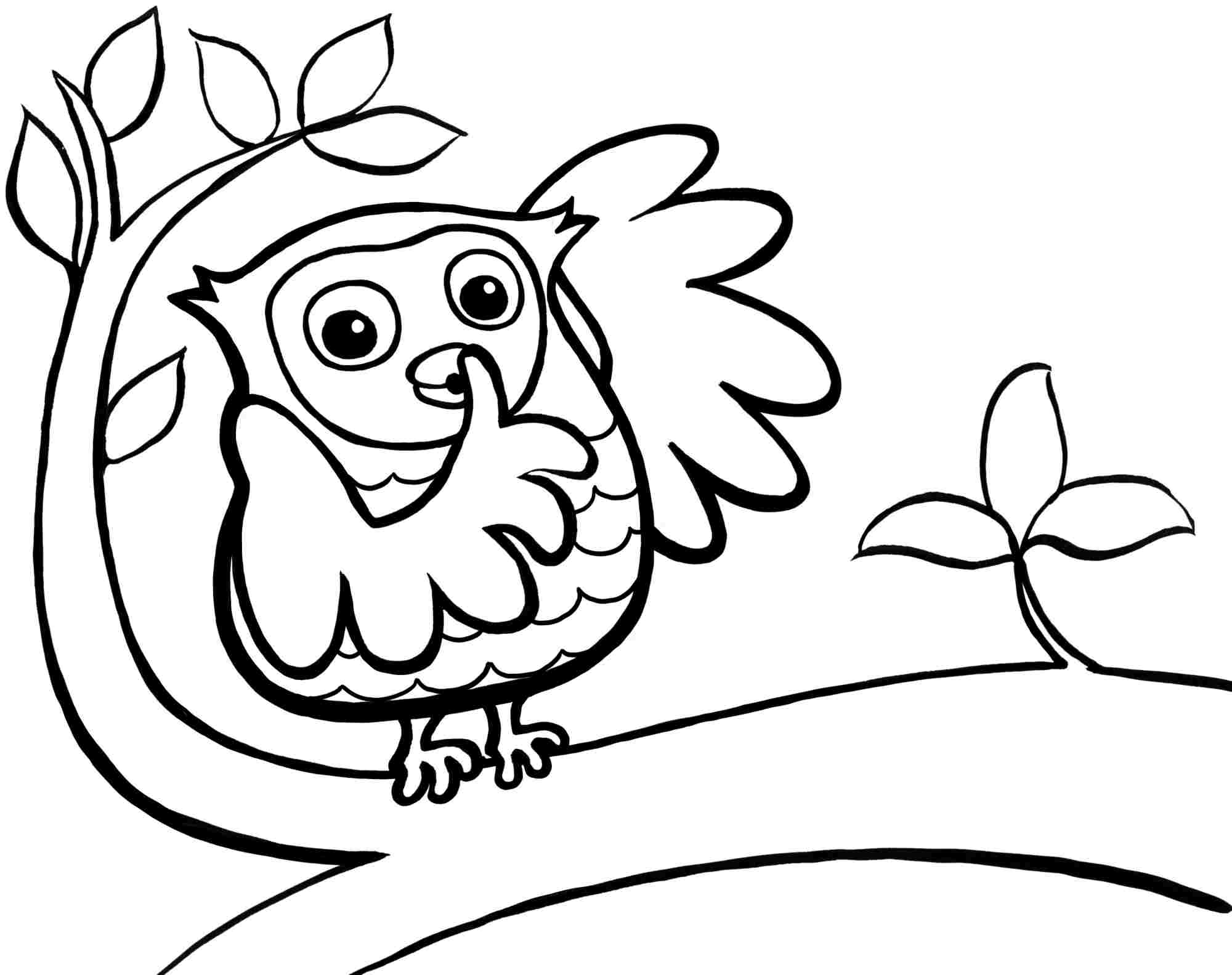 Cute Baby Owl Coloring Pages - Coloring Home