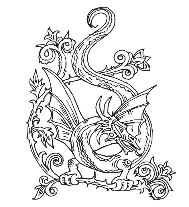 Crafty image in free printable coloring pages for adults advanced dragons