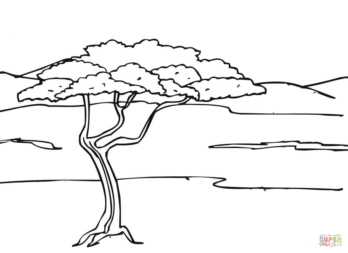 Coloring Pages Savanna Coloring Pages savanna coloring pages az african preschool for all ages
