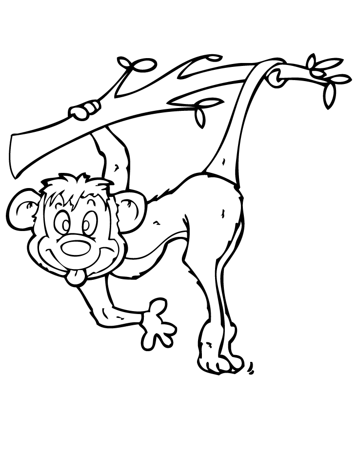 Spider monkey coloring pages coloring home for Spider monkey coloring page