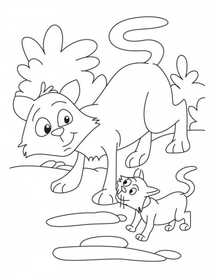 Realistic Warrior Cat Coloring Pages | 99coloring.com