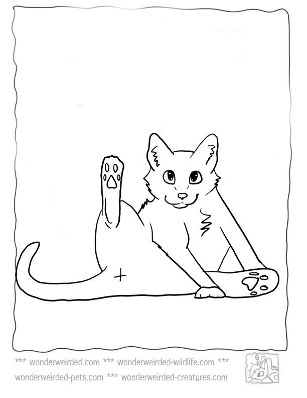 domestic cat coloring pages - photo#21
