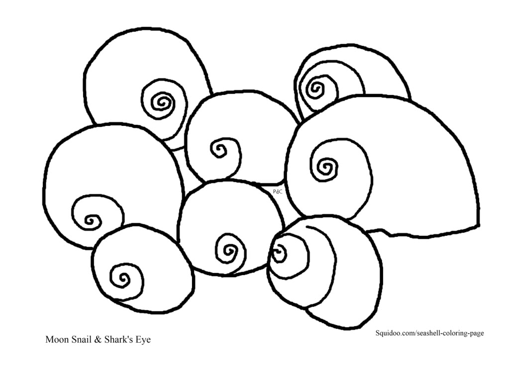 free coloring pages sea shells - photo#28