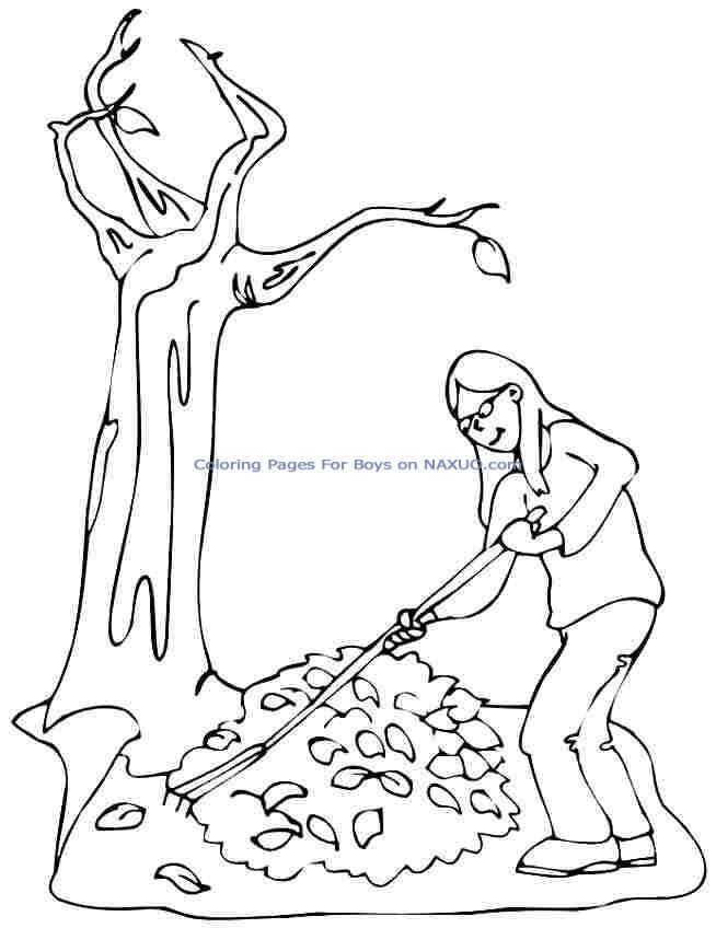 Leaf Coloring Pages Pdf : Related pictures fall season coloring pages mulching