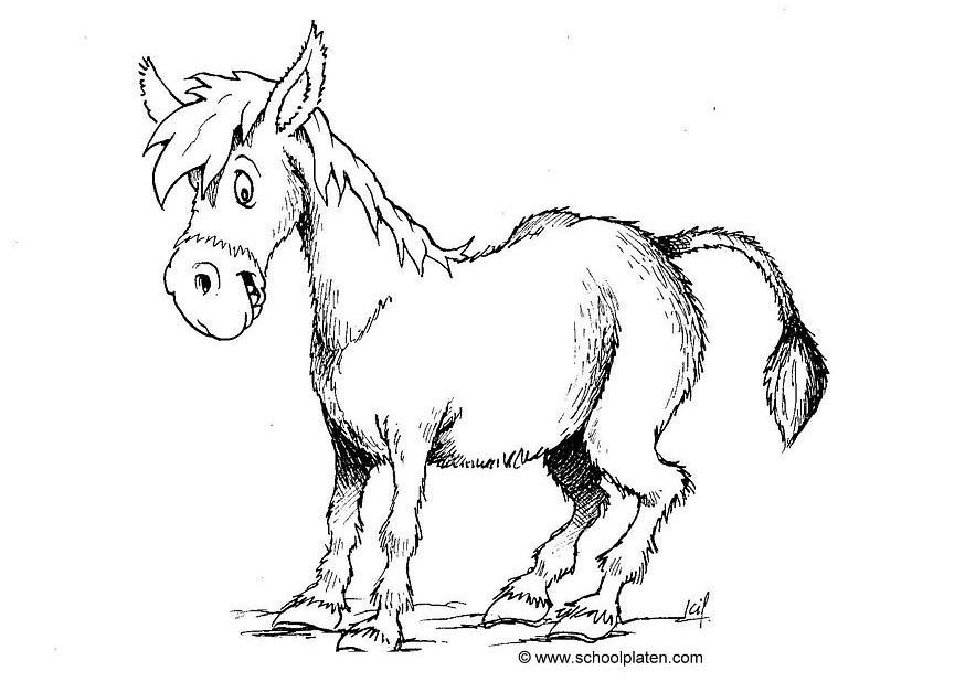 Donkey-coloring-pages-3 | Free Coloring Page Site