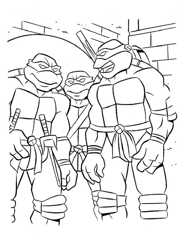 The-Three-Ninja-Turtle-
