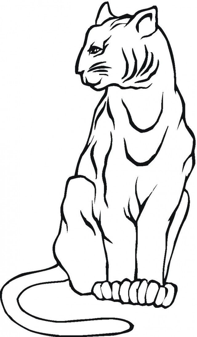 Mountain Lion Coloring Pages - Coloring Home