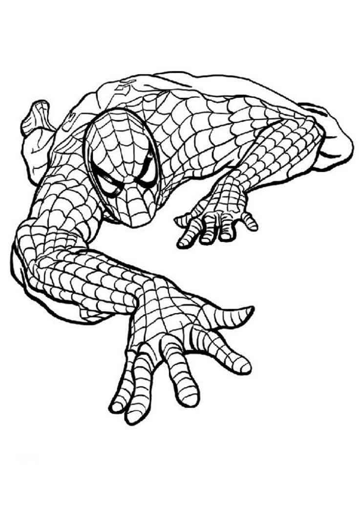Colorear Spiderman 7 Dibujo Para Colorear Coloring Home