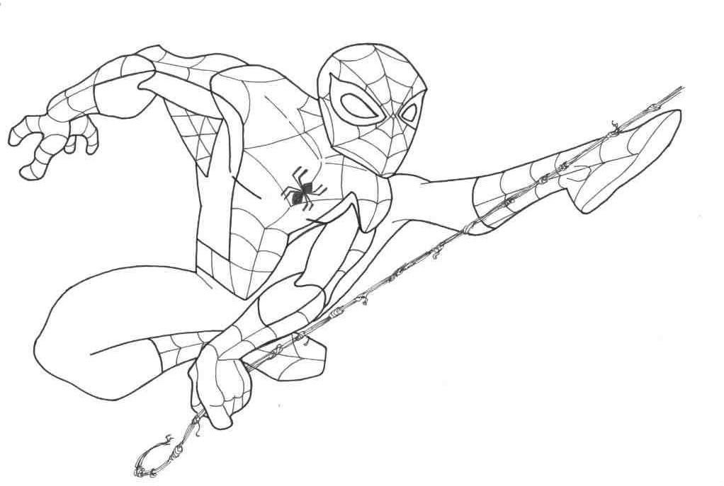 Pictures Of Spider Man  Coloring Home