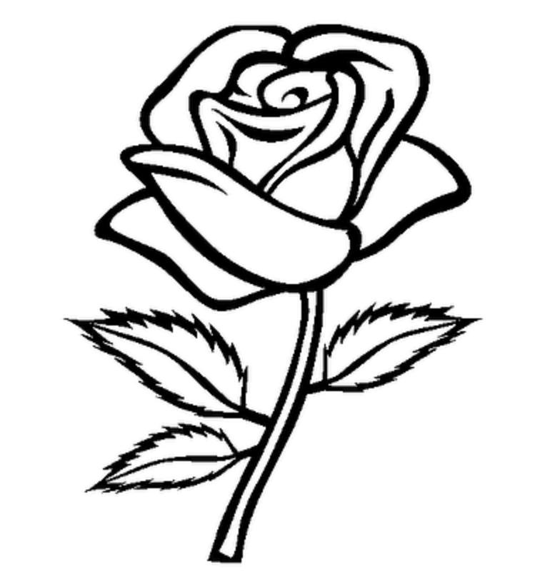 Flower Stem Template Black And Whiteblack White Clipart Of Flower ...