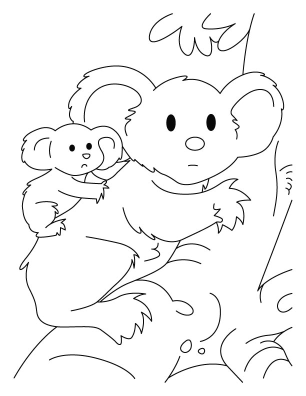 k is for koala bear coloring pages - photo #40