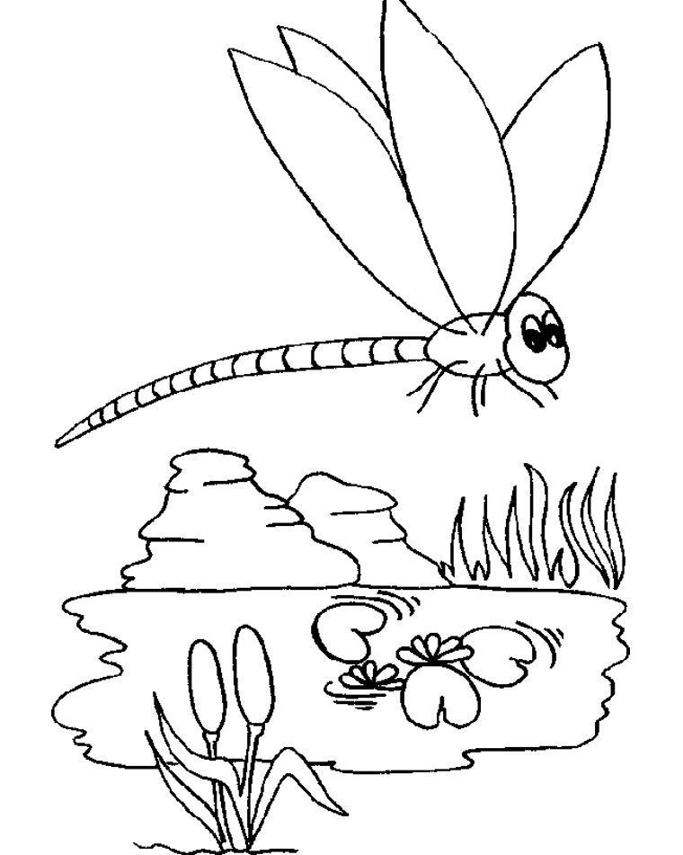 Dragonfly coloring pages az coloring pages for Dragonfly coloring pages