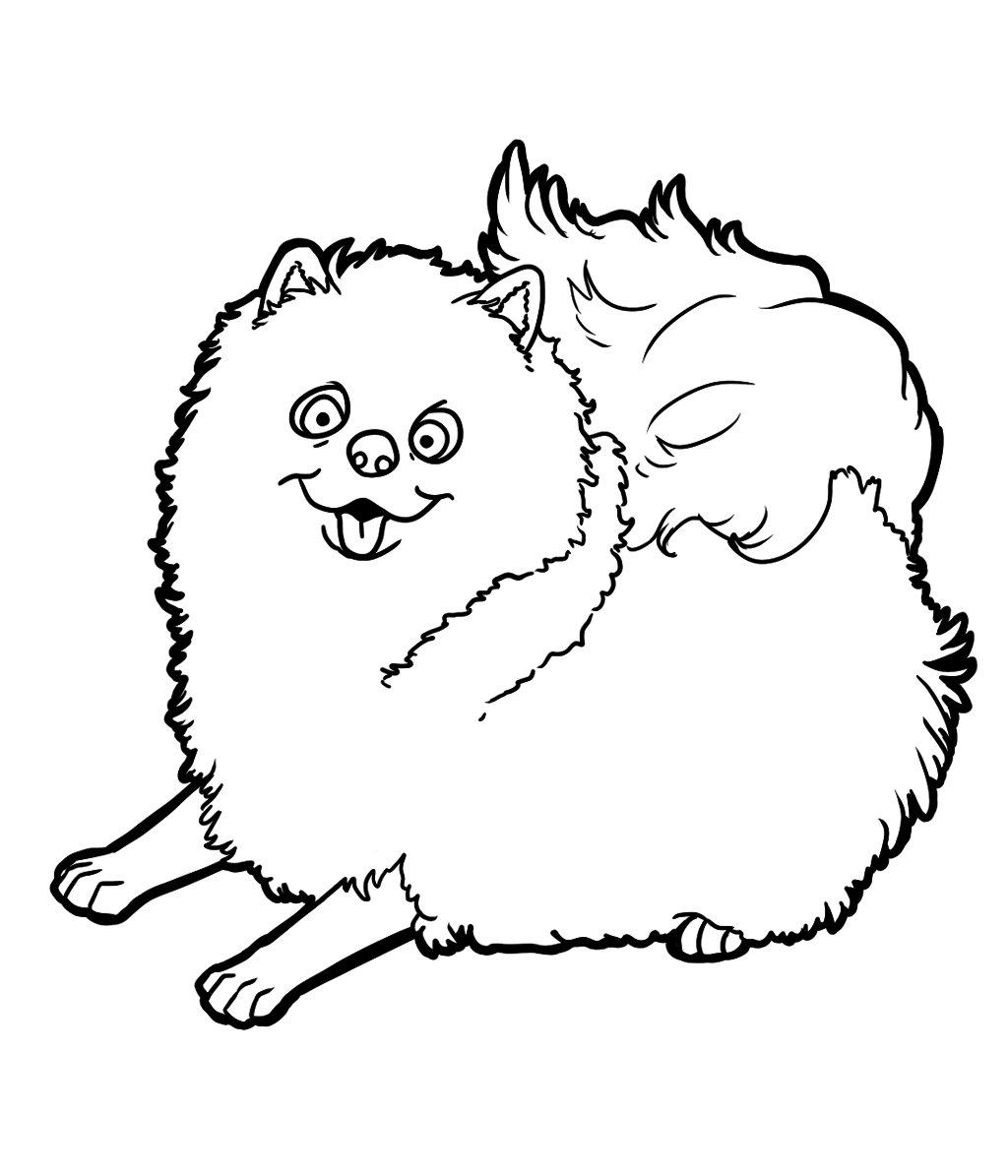 pomeranian coloring pages free-#14