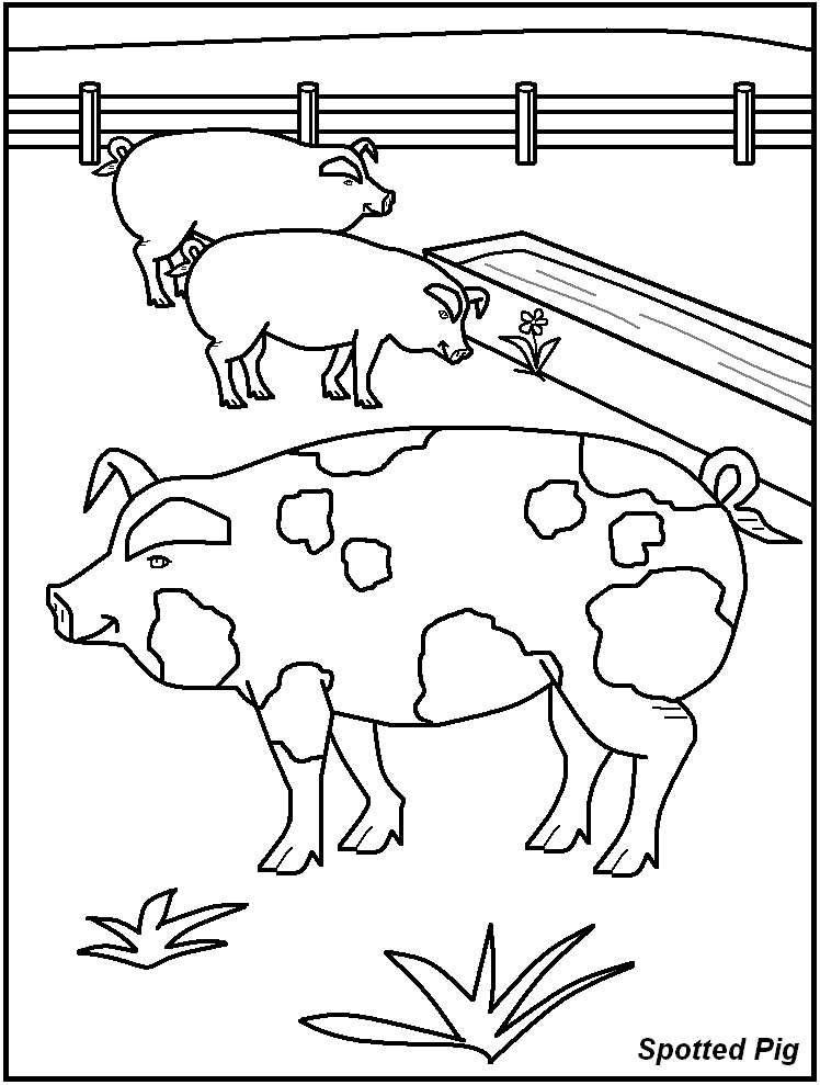 animal homes coloring pages | Farm Animals Printable - Coloring Home