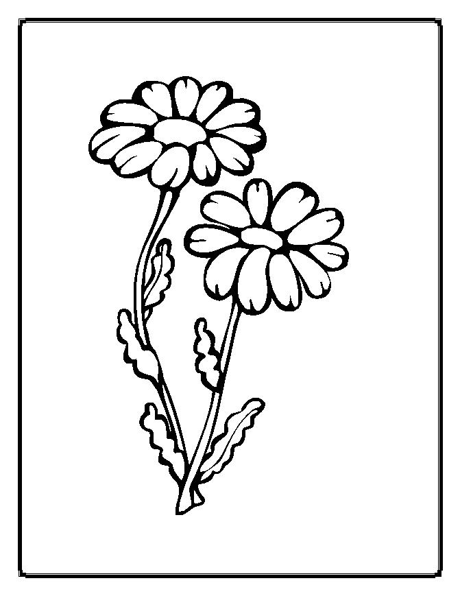 pretty flowers coloring pages - photo#11
