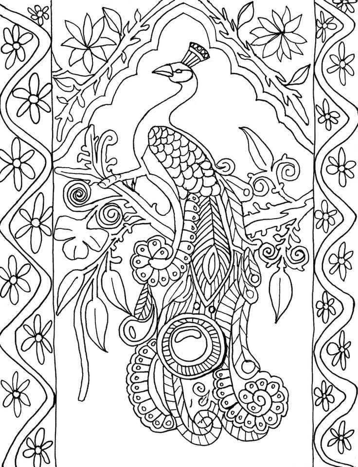 Coloring Page World - Peacock | Coloring Pages - Adult Coloring | Pin…