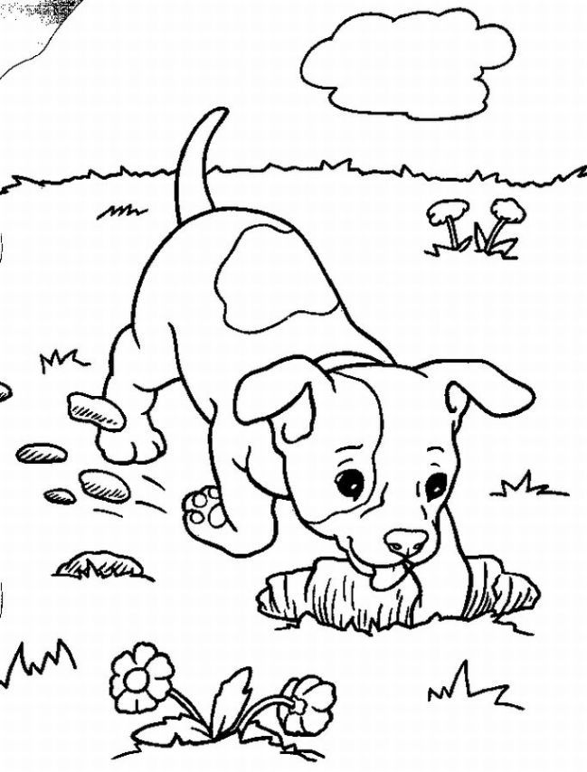 Baby Puppy Coloring Pages Coloring Home