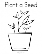 Plant a Seed Coloring Page - Twisty Noodle