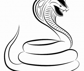 King Cobra Coloring Page Best Of Cobra Snake Head Drawing at Getdrawings in  2020 | Snake coloring pages, Coloring pages, King cobra