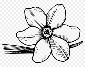 Shining Design Flower Coloring Pages Free Printable - Violet Flower Coloring  Page - Free Transparent PNG Clipart Images Download