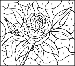 Hard Color By Number Coloring Pages at GetDrawings.com ...