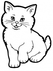 Cute Cat - Coloring Pages for Kids and for Adults