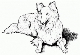 Coloring Pages Of Dogs - Coloring For KidsColoring For Kids