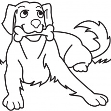 Custom Drawn Animal, Pet and Rodeo Caricatures and Cartoons