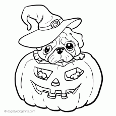 Dog coloring pages for kids | Coloring pages of dogs - DogiStyle