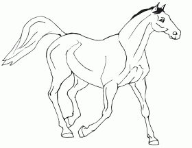 Printable Horse Coloring Page  Coloring Home