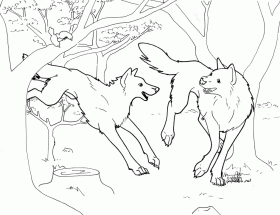 Anime Wolf Coloring Pages Printable KidsColoringSource 196614